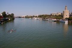 Río Guadalquivir - Acción y Eventos