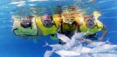 Snorkeling - Estudio del Ecosistema Marino - Accion y Eventos